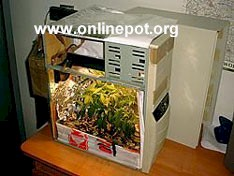 Another Simple Idea For A Small U201cStealth Marijuana Grow Boxu201d